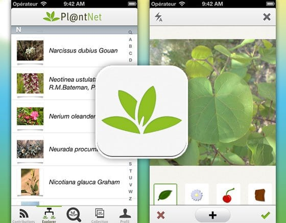 l'application plantnet